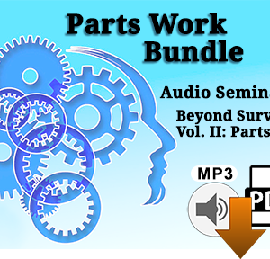 PartsWork Package (Audio Seminar + Beyond Survivor Vol. 2: PartsWork)